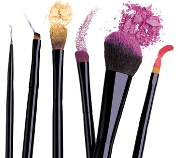 For the Love of Bristles: Introducing Makeup Brushology 101