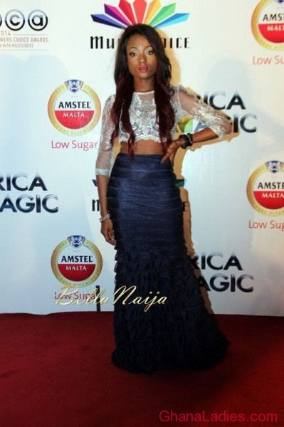 FAB Photos: Joselyn Dumas, Leonora Okine, Efya and others at AfricaMagic 10th anniversary and AMVCA Nominations party