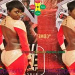 Fashion Police: See What An Actress Wore At Movie Premiere (More Photos)